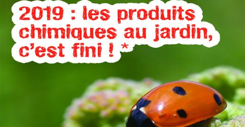 pesticides-janvier-2019